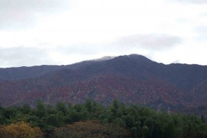 【2020年版】定番の名所から穴場まで!新潟県の紅葉スポット53選の画像13