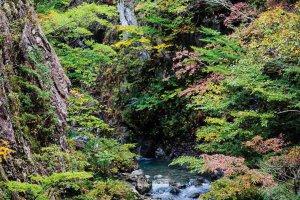 【2020年版】定番の名所から穴場まで!新潟県の紅葉スポット53選の画像25