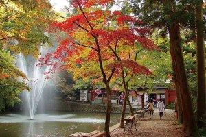 【2020年版】定番の名所から穴場まで!新潟県の紅葉スポット53選の画像29