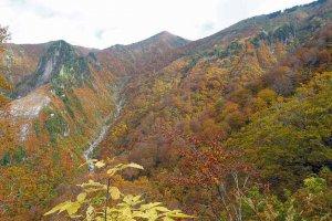【2020年版】定番の名所から穴場まで!新潟県の紅葉スポット53選の画像41