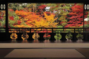 【2020年版】定番の名所から穴場まで!新潟県の紅葉スポット53選の画像15