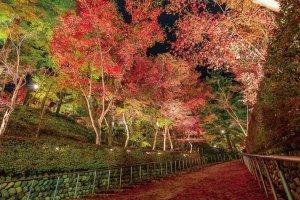 【2020年版】定番の名所から穴場まで!新潟県の紅葉スポット53選の画像33