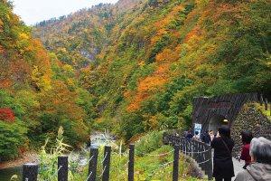 【2020年版】定番の名所から穴場まで!新潟県の紅葉スポット53選の画像43