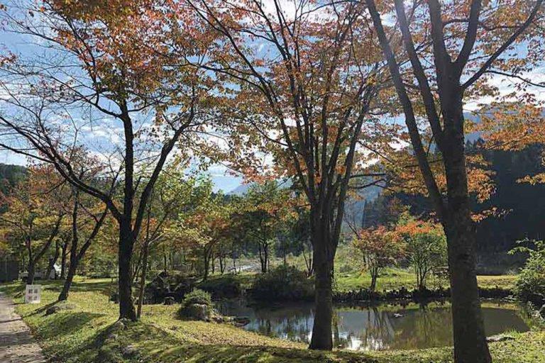 【2020年版】定番の名所から穴場まで!新潟県の紅葉スポット53選の画像8