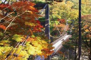 【2020年版】定番の名所から穴場まで!新潟県の紅葉スポット53選の画像4