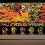 渓谷美も楽しめる秘境感あふれるエリア!十日町市・津南町・湯沢町の紅葉スポット&おすすめベーカリーの画像12