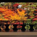 【2020年版】定番の名所から穴場まで!新潟県の紅葉スポット53選のメイン画像