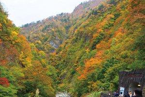 渓谷美も楽しめる秘境感あふれるエリア!十日町市・津南町・湯沢町の紅葉スポット&おすすめベーカリーの画像2