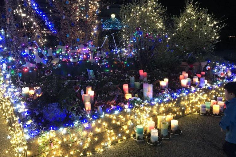 ファンタジーの世界のよう いくとぴあ食花で冬イルミ「イルミネーションで日常に彩りを」