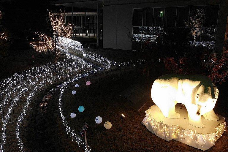 地元小学生が描いたシロクマも 新潟市北区文化会館を明るく彩るイルミネーション