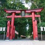 ご利益別!新潟県内パワースポットめぐり神社・寺15選のメイン画像