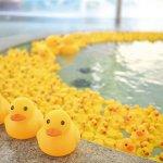 お風呂で心も体もリラックス!新潟県内の日帰り温泉・日帰り湯45選の画像10