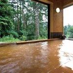 お風呂で心も体もリラックス!新潟県内の日帰り温泉・日帰り湯45選の画像35
