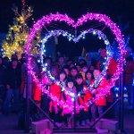 【最新版】新潟県 冬のイルミネーション特集 2020-2021の画像21