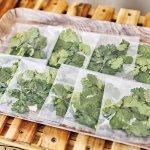 Vui × gioia(ヴイ ジョイア)/ベトナムのソウルフード「バインミー」のテイクアウト専門店が新潟駅前に!新潟の食の魅力をプラスしたベトナム風サンドイッチの画像5