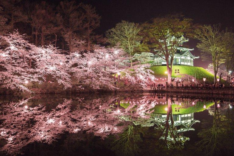 【2021年版】新潟のお花見スポット64選 桜の名所 定番&穴場の画像53