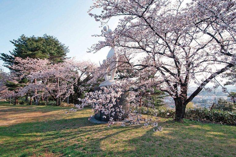 【2021年版】新潟のお花見スポット64選 桜の名所 定番&穴場の画像10