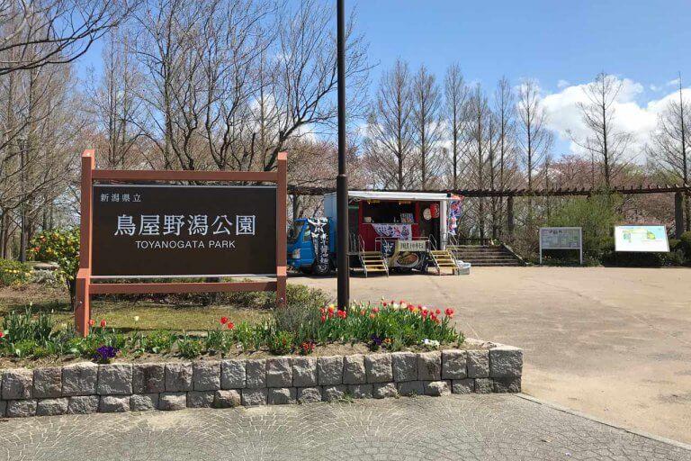 鳥屋野潟公園でキッチンカーのラーメン食べてきた。炭焼きだんごもハシゴして満腹♪の画像2