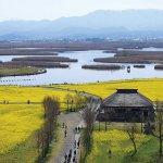 春から初夏の花めぐり。新潟のおすすめ花スポット25選の画像8