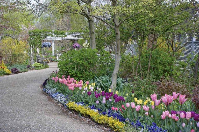春から初夏の花めぐり。新潟のおすすめ花スポット25選の画像20