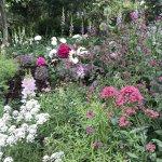 バラが見頃!美しい英国式庭園に癒やされる みつけイングリッシュガーデンの画像3