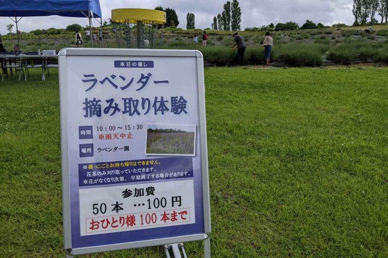 【6/27(日)は入園無料】18000株のアジサイが見頃を迎える「国営越後丘陵公園」でアジサイ・バラ・アサザの花巡りをしてきましたの画像13
