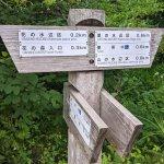 【6/27(日)は入園無料】18000株のアジサイが見頃を迎える「国営越後丘陵公園」でアジサイ・バラ・アサザの花巡りをしてきましたの画像21