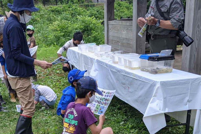 【6/27(日)は入園無料】18000株のアジサイが見頃を迎える「国営越後丘陵公園」でアジサイ・バラ・アサザの花巡りをしてきましたの画像24