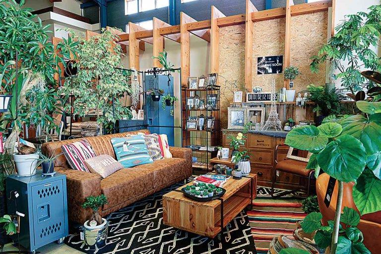 植物や雑貨を販売する複合施設が女池にオープン 「LEAFS meike Hobby Shop Hello」予約不要のラジコンサーキットも