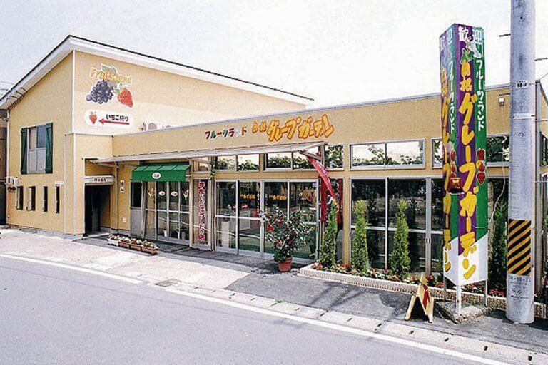今が旬!新潟県内のさくらんぼ狩りスポット3選の画像4