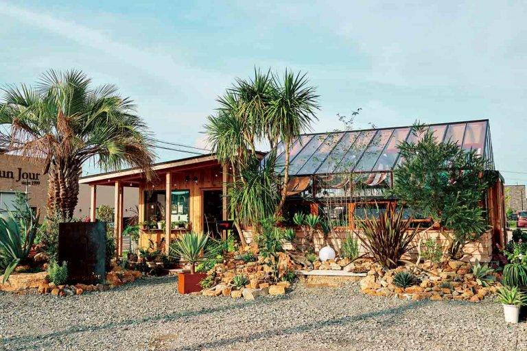 観葉植物がずらり!新潟市・女池上山にオープン 植物に囲まれた気になる新店「ROOTS(ルーツ)」