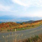 【2021年版】新潟の紅葉スポット56選 名所&穴場 見頃・ライトアップ情報もの画像42